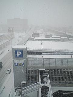 北海道は雪