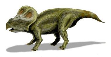Protoceratops_bw