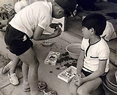 採集した昆虫を処理する子どもたち