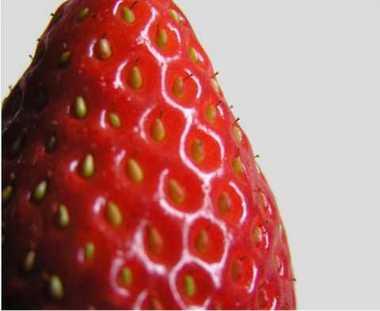 イチゴの実はどこにある?
