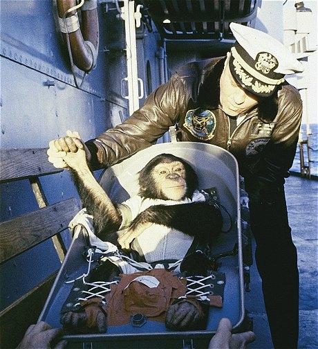 Ham the Chimp  Ham the Astrochimp,