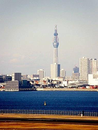 羽田空港から望む建設中のスカイツリー